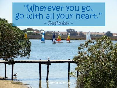 """""""Wherever you go, go with all your heart."""" Confucius - Chinese proverb #travel #photography #outdoors #nature #SouthAfrica #quotes"""
