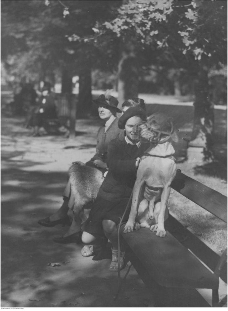 """Eric Dale ن na Twitterze: """"Na koniec... #Warszawa Aleje Ujazdowskie. Ludzie podczas spaceru. Rok 1936. #IIRP https://t.co/C59Mi5hMnp"""""""