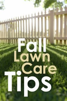 Fall Lawn Care Tips!                                                                                                                                                                                 More