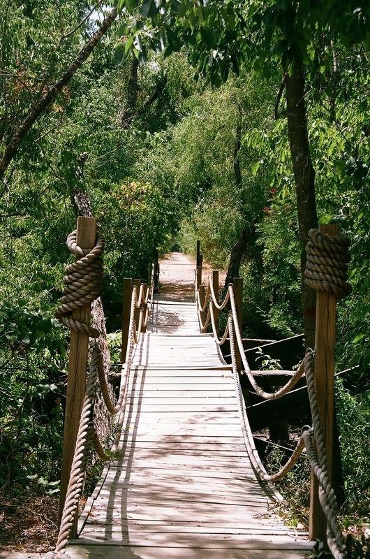 The Hanging Bridge at Mineola Nature Preserve, Mineola, Texas (Near Tyler)