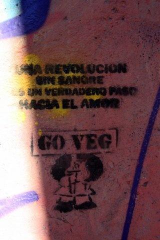 Una Revolución sin sangre es un verdadero paso hacia el Amor