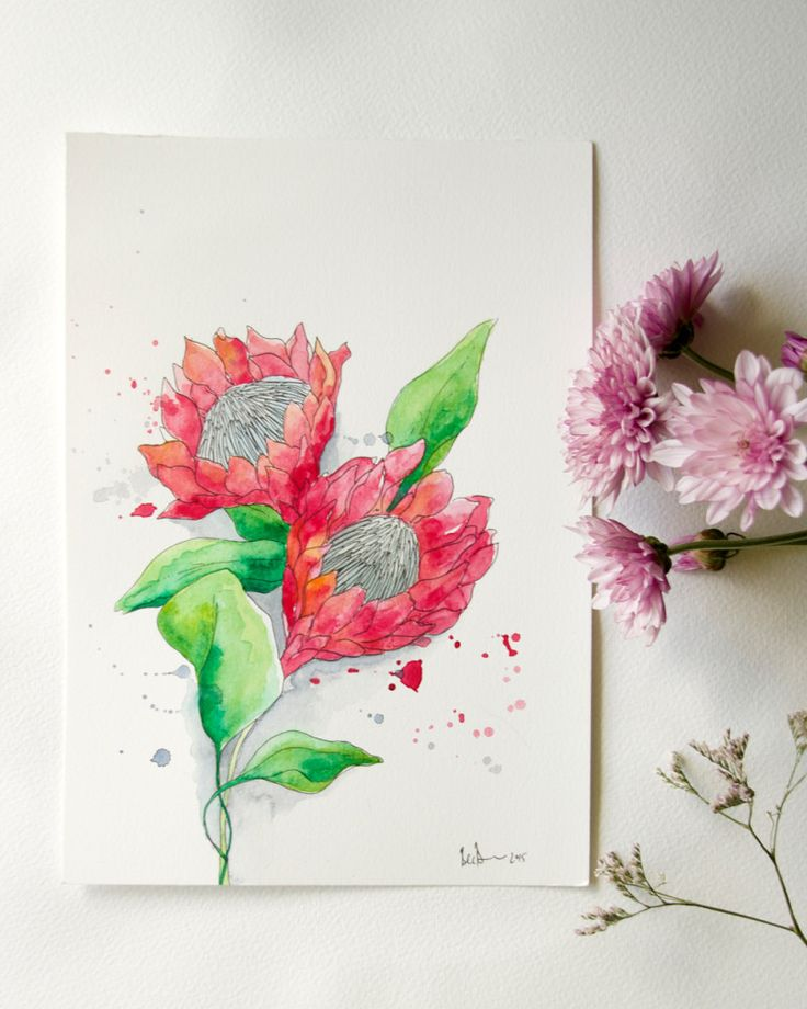 Protea Art by Bec Brown