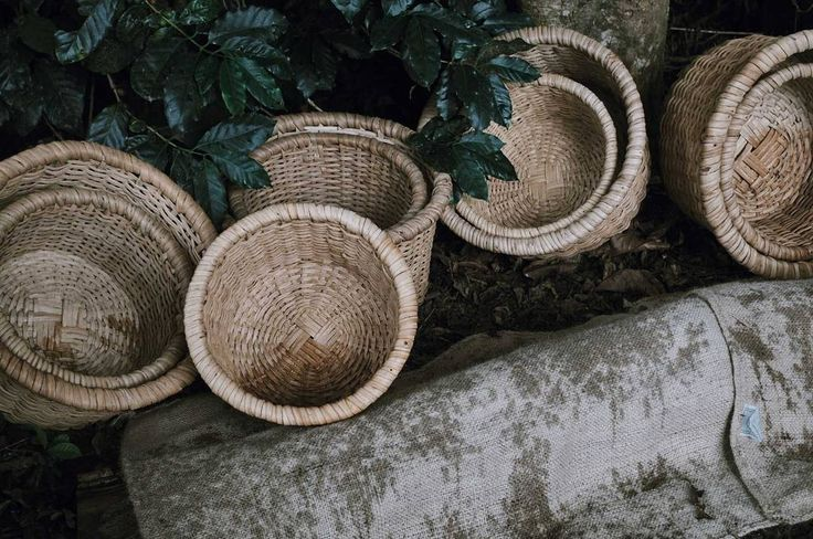 Baskets waiting for us to help with  the harvest.  I fancied one to take home! . . . What an interesting morning. We have learnt so much about the way the coffee grows and how @Nespresso works with the farmers to ensure they get a premium price for their premium coffee. #nespressotastemakers . . . . .stayandwander #visualsoflife#socality #livefolk #wildernessculture#roamtheplanet #forgeyourownpath#agameoftones #exploretocreate#artofvisuals #ourplanetdaily #vzcomood#watchthisinstagood #vsco…