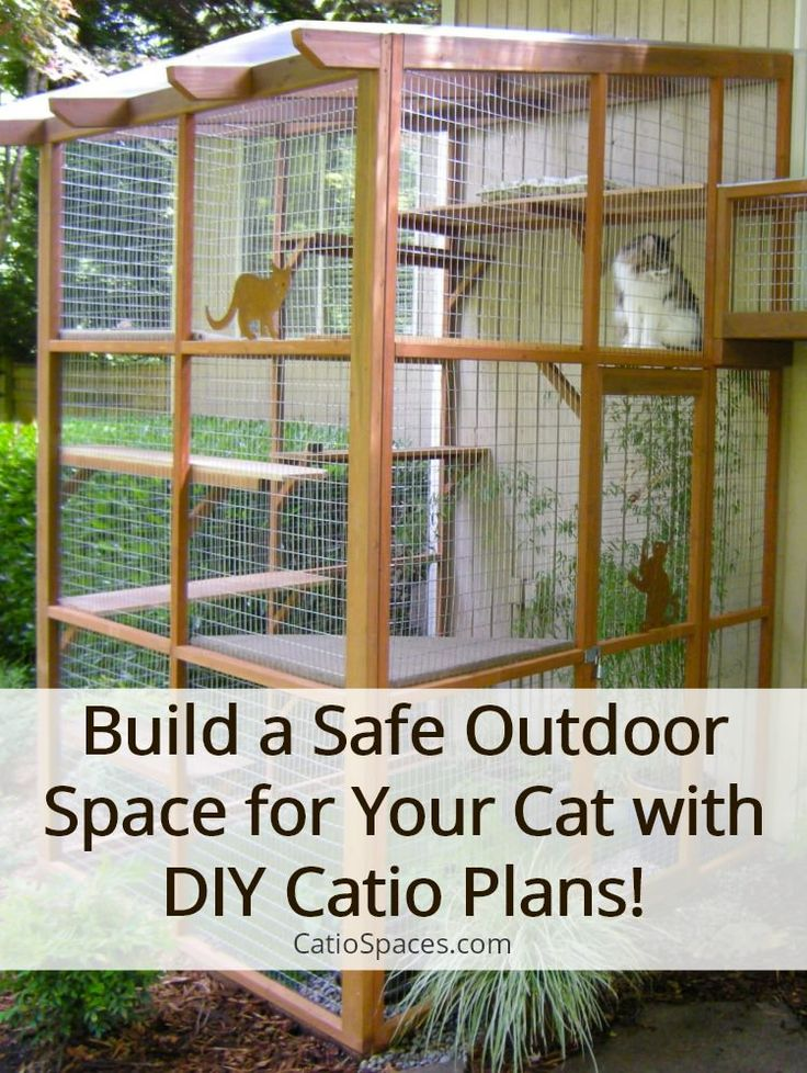 Cat Cage Decoration Ideas It 39;s Easy To Build A Catio With Diy Plans Outdoor Cat