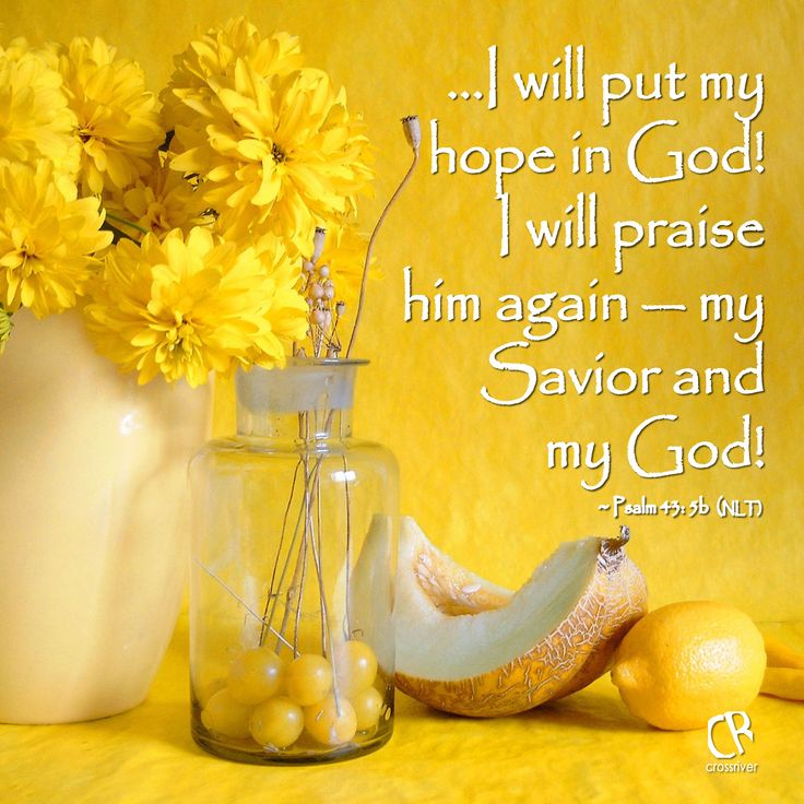 ...I will put my hope in God! I will praise him again - my Savior and my God! - Psalm 43: 5b #NLT #Bible #verse | CrossRiverMedia.com