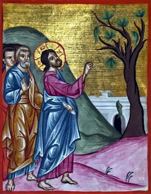 Christ curses the Fig Tree. Holy Monday