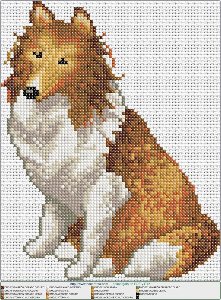 Mejores 24 imágenes de Perros en Pinterest | Patrones de punto de ...