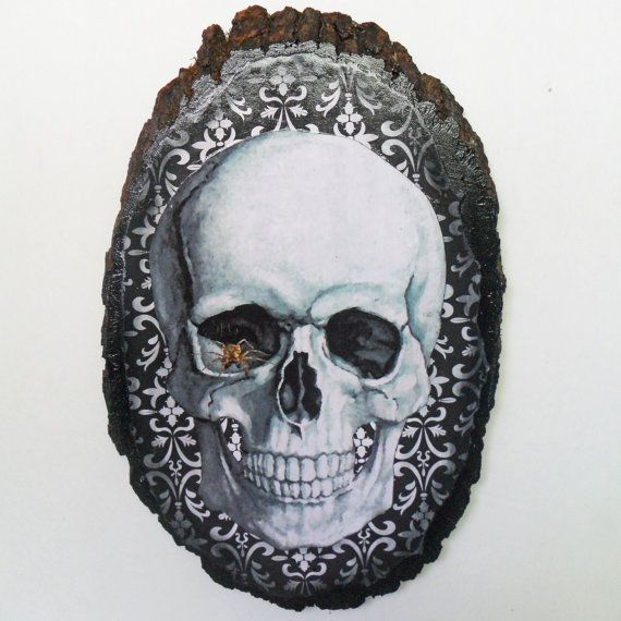 1000 images about nacreous alchemy on pinterest gothic for Alchemy skull decoration
