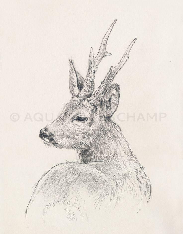 Hunting Canvas Painting Diy Deer Heads