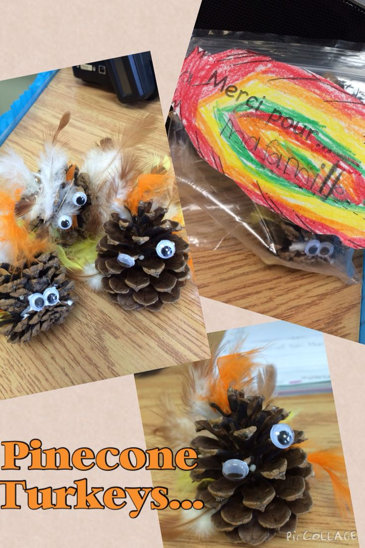 """Collect pine cones, glue feathers to the back and one on top, glue eyes, (could add beaks, my students didn't want to) place in bag to take home """"I am thankful for...""""."""