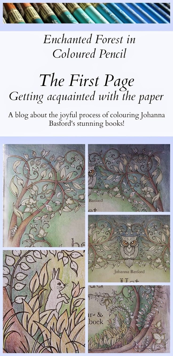 Passion for Pencils: Welcome to Enchanted Forest, part 1. Just bought my 1st Johanna Basford book today,.Lost Ocean. It is so beautiful I don't want to ruin it by coloring in it. Will have to make copy sheets