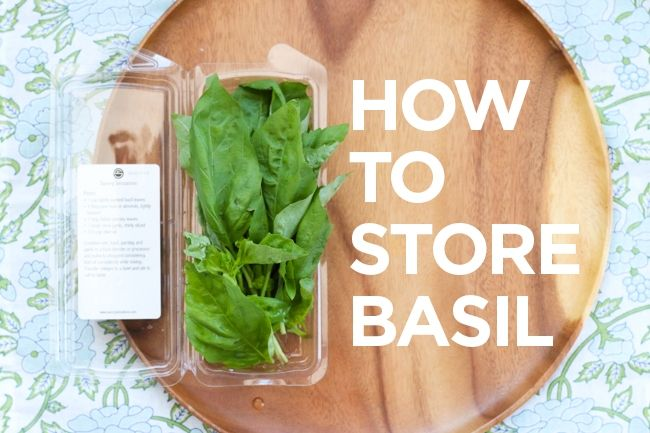 good to know! I've always stored in fridge, and it goes bad quickly     How to store basil | Chef Julie Yoon