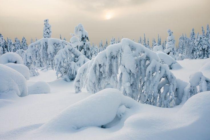La Laponie suédoise