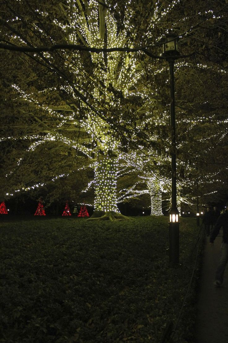 12 best The Holiday Season in Greater Wilmington images on Pinterest ...
