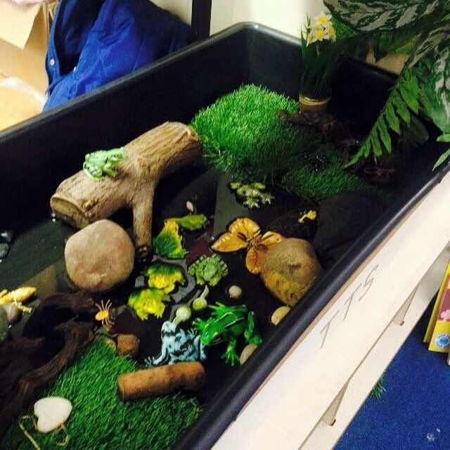 Frog Small World Pond Small World Play Small World Eyfs