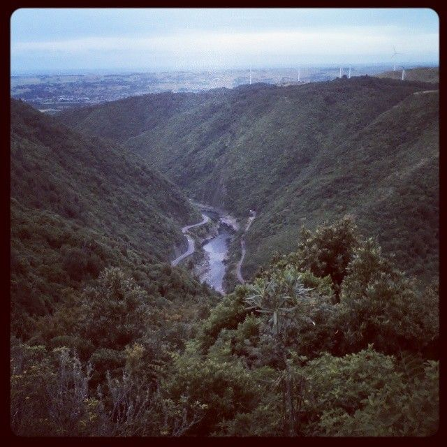 A view from the Manawatu Gorge Walk in my Hometown, Palmerston North, New Zealand.