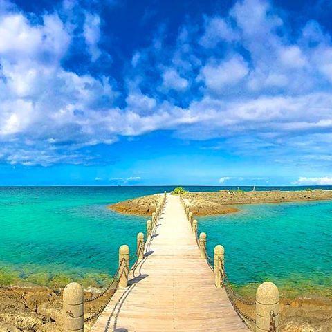 【tingara_nana】さんのInstagramをピンしています。 《🌴☀サンマリーナホテル☀🌴 ・ #okinawa #沖縄 #リザンシーパークホテル谷茶ベイ #海 #beach #夏 #summer #夕日 #sunset #ハイビスカス #三線 #エイサー #スタバ #starbucks #カフェ #沖縄フォト祭り #ティンガーラ #サンマリーナホテル #過去pic》