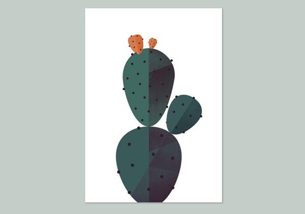 Geometry & Biology: Cactus by Maya Stepien, via Behance