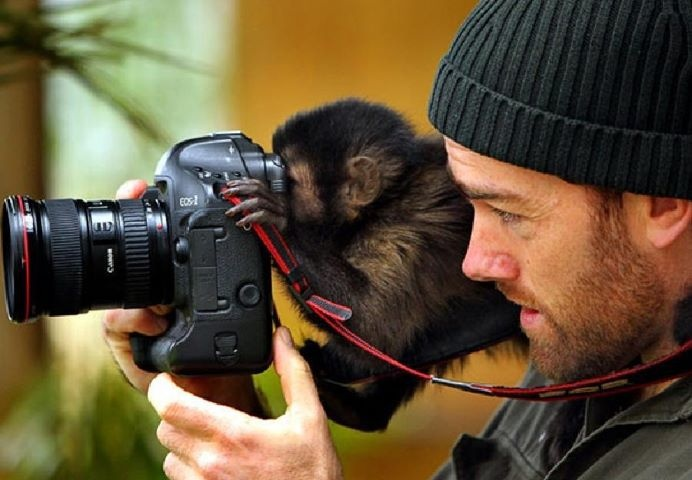 OMG monkeys and cameras....my two loves!: Animal Pictures, Take Pictures, Animal Photo, Pictures This, Photographer, Camera Lens, Curious George, Slr Camera, Monkey