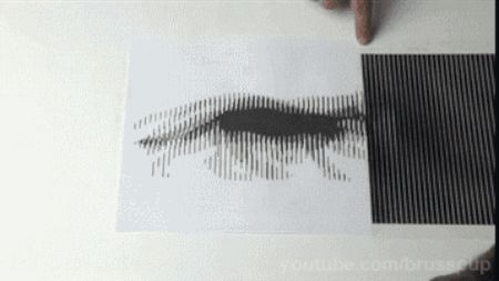 By manipulating the human brain and eyes, Brusspup is able to create amazing animations with nothing but a black card.