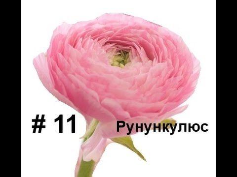 Ранункулюс из фоамирана, Лариса Аптриева, МыловароФФ