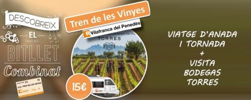 Billete Combinado Tren de les Vinyes