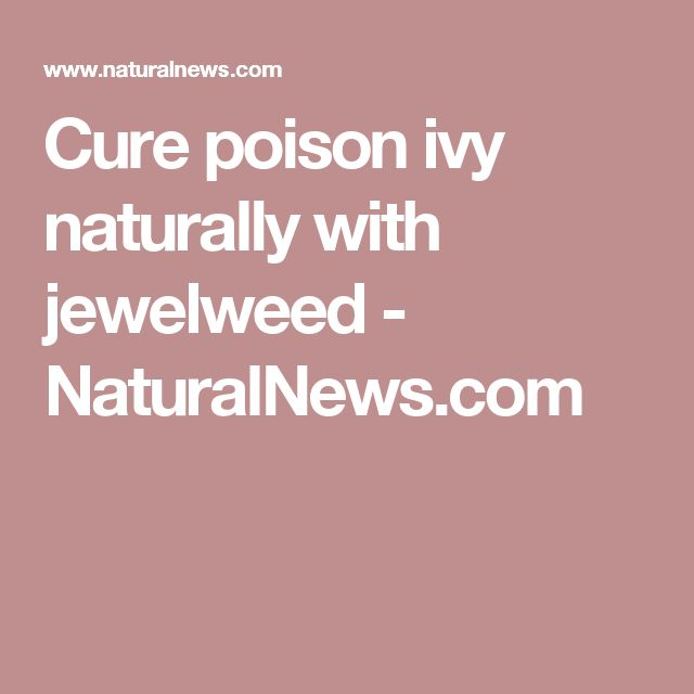 Cure poison ivy naturally with jewelweed - NaturalNews.com