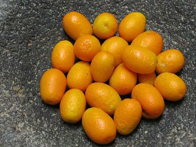 The kumquat is a citrus fruit that resembles the orange, but is smaller and oval-shaped like an olive. Cultivated in China, Japan and Taiwan, it is commonly used in making marmalade, jelly and preserves.
