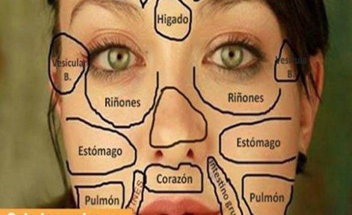 La medicina tradicional china nos enseña que todas las áreas de nuestra cara se relacionan con determinados órganos de nuestro cuerpo, y nuestro rostro muestra cuando sufrimos algún desequilibro, con mayor frecuencia por la aparición de manchas, erupciones cutáneas y cambios en el color de la piel. Áreas del rostro y sus determinados órganos Lectura