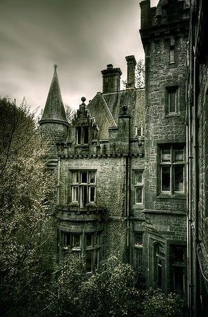 Partially tucked away behind tall evergreens, the house used to be an old, abandoned cathedral Valek converted into his residence back when the Occult had been first created, years ago. It's stony facade made it look like a miniature castle against the dreamy backdrop of the Bohemian forests. ~Chapter 1; Of Light and Darkness.