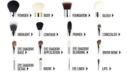 Makeup brushes 101 pic.twitter.com/0wIzeYu7Zt