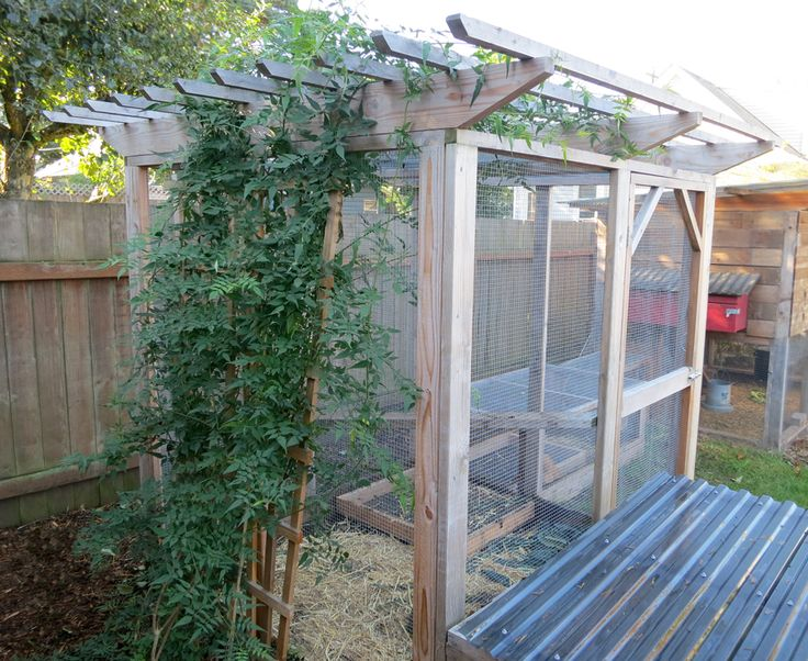 Over The Garden Walk: Best 25+ Walk In Chicken Coop Ideas On Pinterest