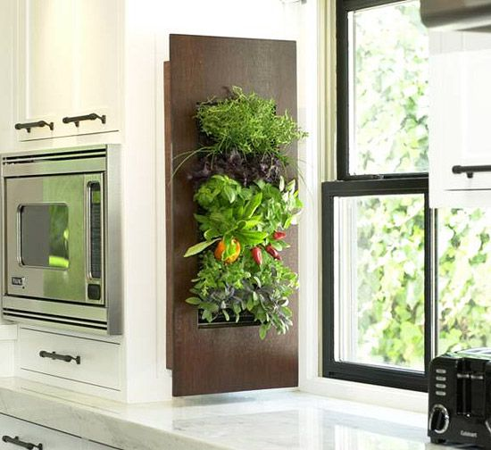 Herbs Within an Arm's Reach-  What's more accessible than having fresh herbs growing in your kitchen, ready to season your latest meal. Thanks to vertical gardening systems, such as this one from BrightGreen, you can have vertical and highly decorative growing modules for plants -- such as basil and cilantro -- to flourish right where you need them the most.