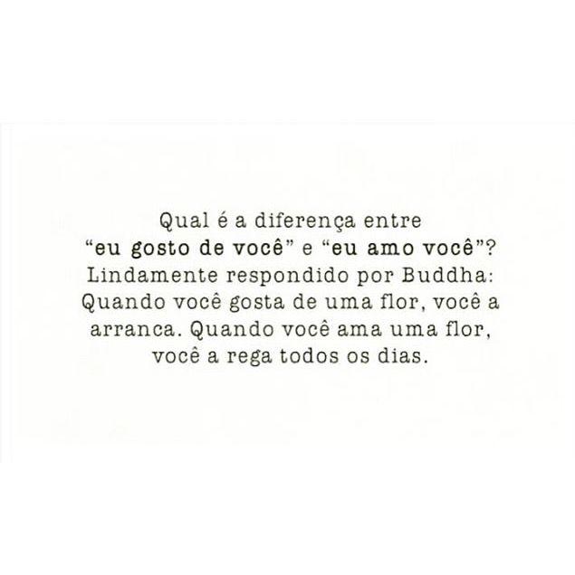 Qual é a diferença entre ''eu gosto de você'' e eu amo você''  Lindamente respondido por Buddha: Quando você gosta de uma flor, você a arranca. Quando você ama uma flor, você a rega todos as dias. #frases #amar #flor