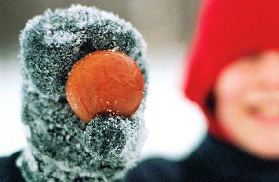 Zurbaines.com | Sorties: Récolte des Pommes Glacées, visite du verger La Face Cachée de la Pomme >> http://zurbaines.com/fr/sorties/visite-pommes-glacees/