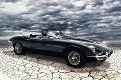 my friend the Jag  by Joachim G Pinkawa