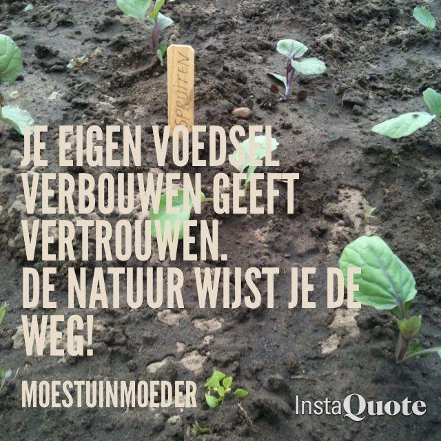 Http://moestuinmoeder.nl. Moestuinmoeder blogt over moestuinieren, consuminderen en duurzaam leven.