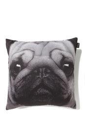 Nice Cushy Cushion, PUG SAKE