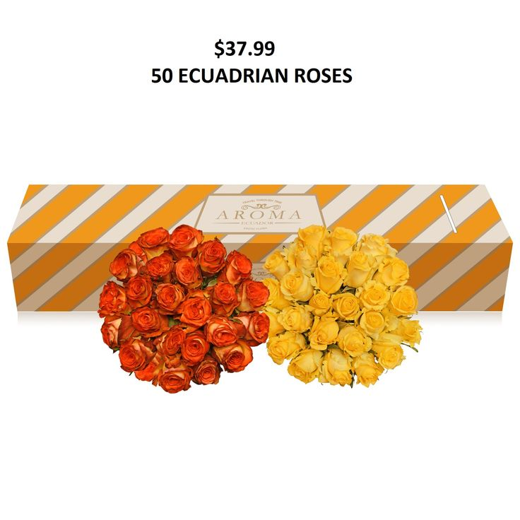 #Yellow,#Bicolor,#Yellow,#orange,#roses, #Promo, #Flowers #wedding, #events, #bouquets, #arrangement, #party, #fall, #winter, #summer, #spring, #harvest, #Christmas, #garden, #centerpieces, #autumn, #tropical,#recipes,#decor,#bridal,#floral,#DIY,#gift,,#online,#valentines,#bride,#floral,#ideas,#blooms,#anniversary, #mothers #day, #baby, ,#gardening, ,#plants, #holidays, ,#fashion, #, #home, #decor, #USA, #Costco, #art, #Texas ,#design, #Sams ,#bulk, #amazon, #style, #shopping