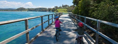 Narooma walks | Mill Bay Boardwalk