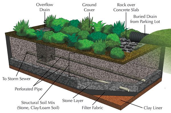 Percolation Pit For Storm Runoff Cu Structural Soil