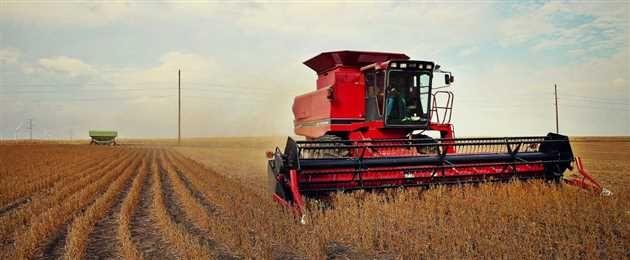 Guvernul a aprobat printr-o ordonantă de urgentă modificarea a două acte normative în scopul facilitării conditiilor de eligibilitate pentru plătile directe în agricultură din fonduri europene