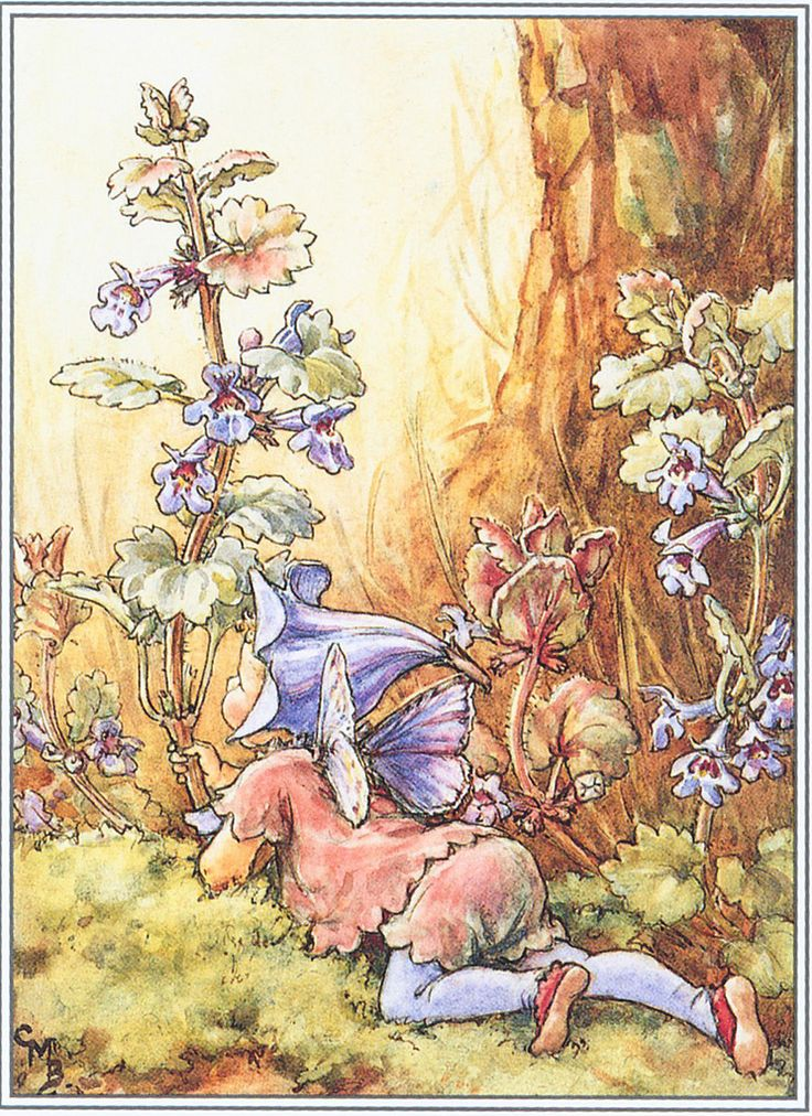 The Ground Ivy Fairy by Cicely Mary Barker