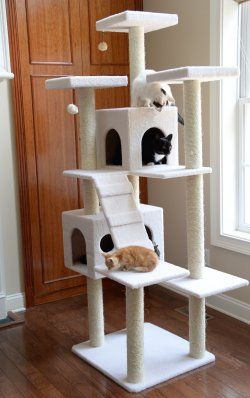 Cat Trees Page 2 | KittyKandy Canada