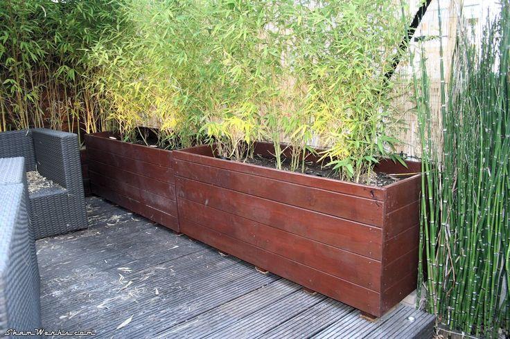 Terrasse project deux nouveaux bac bambous pour ma terrasse fini la vue sur les voisins d - Bambou en bacs terrasse ...
