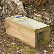 How to Build a Simple Rabbit Trap | eHow