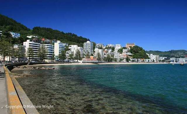 Oriental Bay, Wellington NZ, summer 2013. I took this with max polarisation for that 'National Geographic' look.