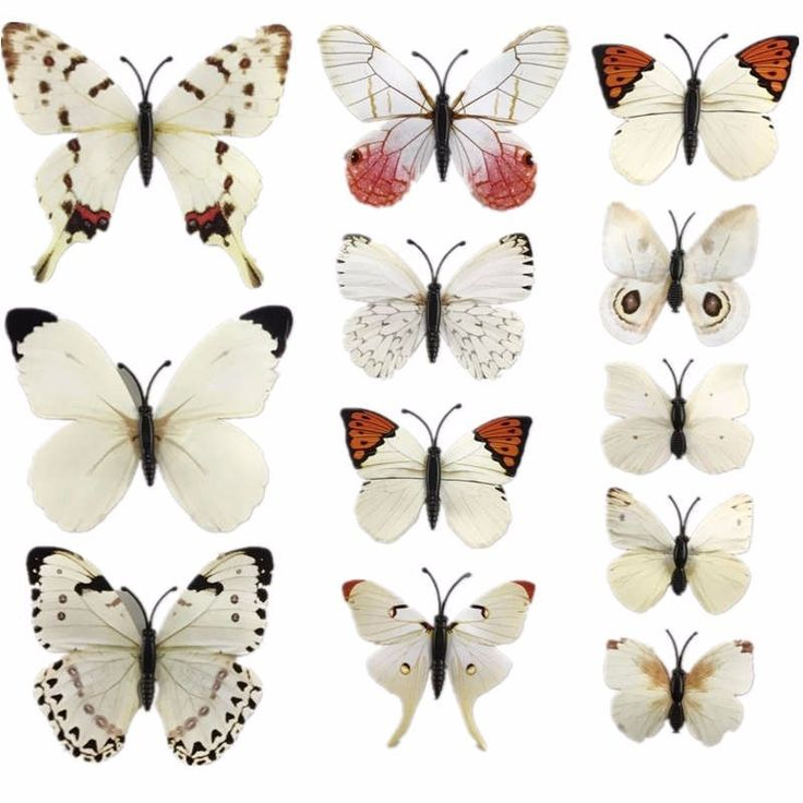 Стая бабочек может быть отличным украшением для детской комнаты. Это принесет вашему ребенку радость и отличное настроение.