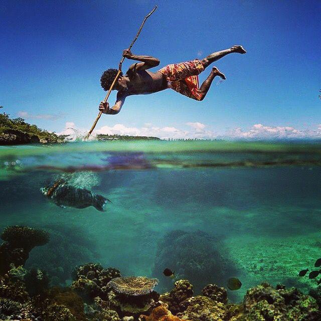 Harpooning (spearing) in Jamaica via Instagram.com ...