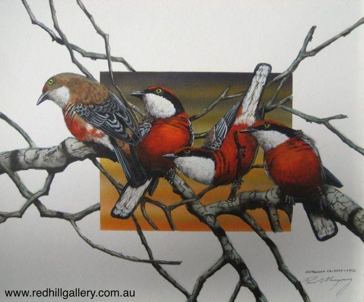 Paul Margocsy 'Chatter Boxes, Aus Crimson Chats' 30x25cm. 61 Musgrave Road, Red Hill Brisbane, QLD, Australia. art@redhillgallery.com.au